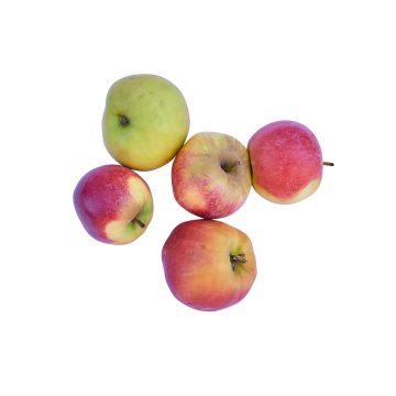 Äpfel 500g